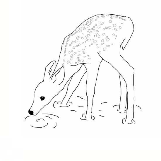 Image De Art Deer And Drawing: نقاشی آهو و انواع رنگ آمیزی آهو برای کودکان
