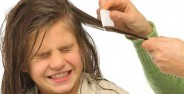 درمان های شپش سر در کودکان