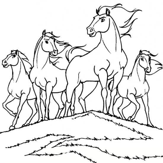 نقاشی گله اسب