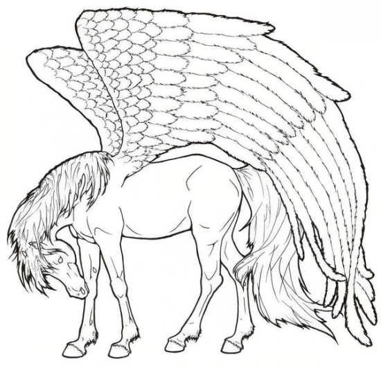 نقاشی و رنگ آمیزی اسب برای کودکان