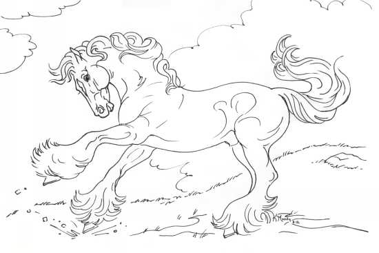 نقاشی حیوان اسب
