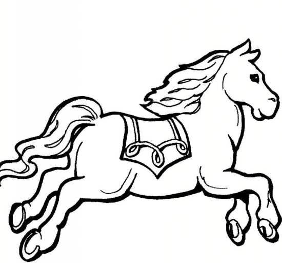رنگ آمیزی اسب