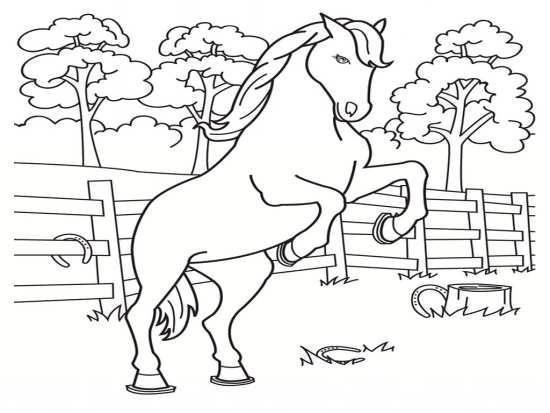 نقاشی اسب در حال دویدن