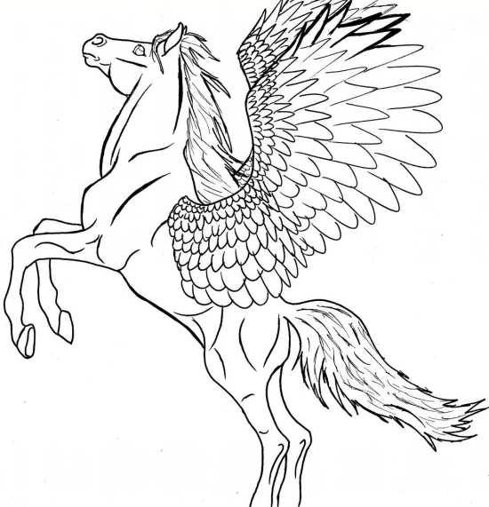 طرح اسب بالدار زیبا