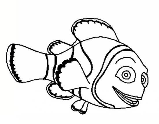ماهی های بامزه