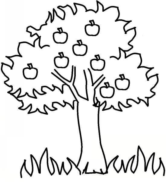 نقاشی درخت