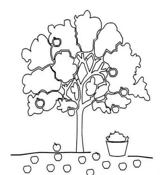 نقاشی درخت برای کودکان