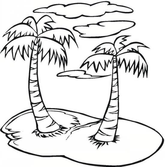 نقاشی های درخت نخل برای کودکان