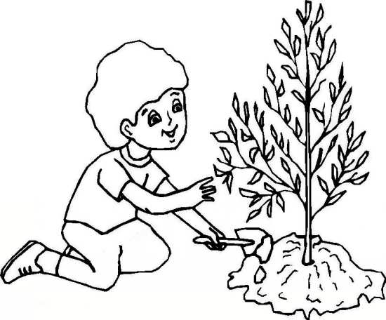 مدل نقاشی درخت کودکانه
