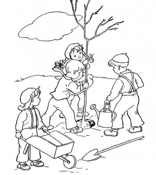 رنگ امیزی درختکاری برای کودکان