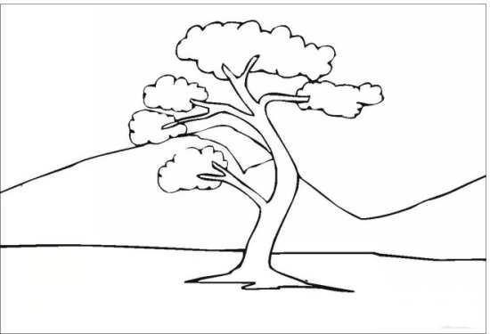 نقاشی تک درخت