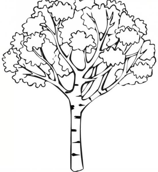 نقاشی درختان زیبا