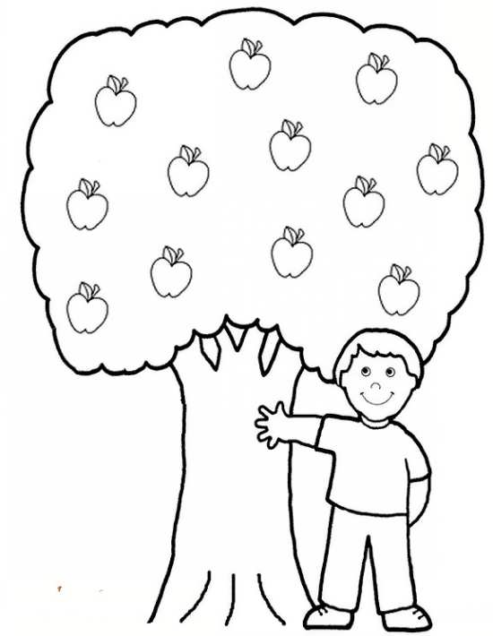 نقاشی زیبای درخت میوه