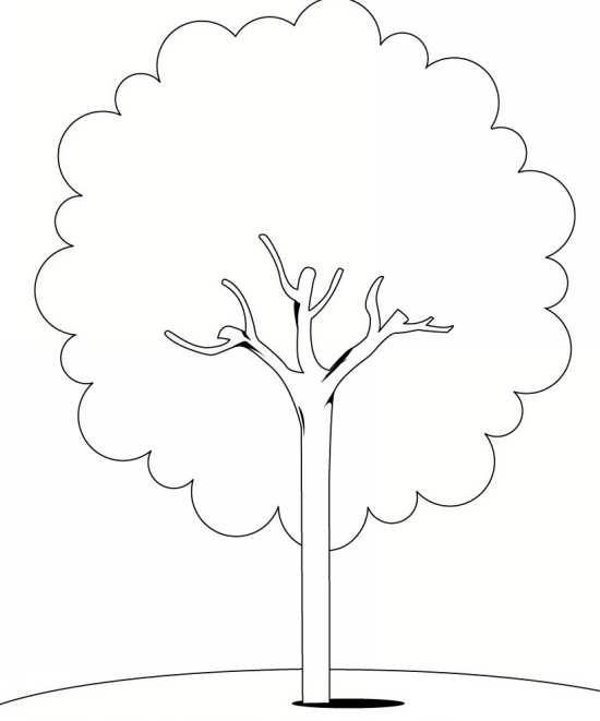 رنگ آمیزی درخت برای کودکان