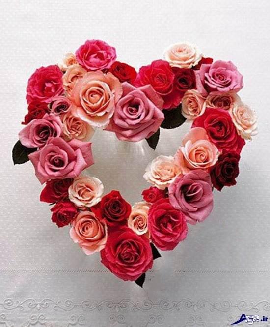 گل های زیبا و جذاب با طرح قلب