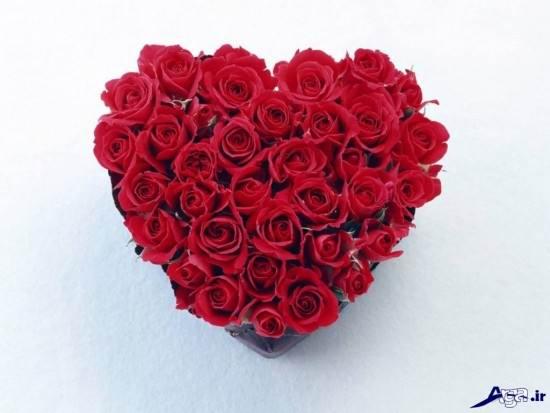 عکس های زیبای قلب و گل