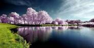 عکس مناظر طبیعی زیبا و خارق العاده
