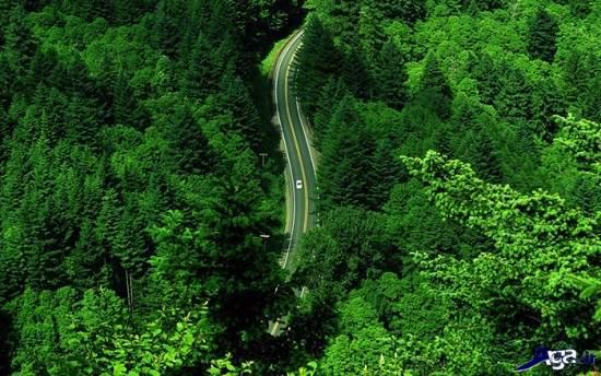 جذاب ترین جاده ها و مناظر طبیعی