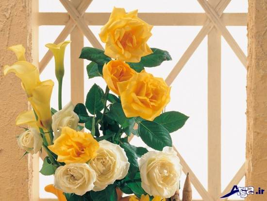 سبد گل رز زرد
