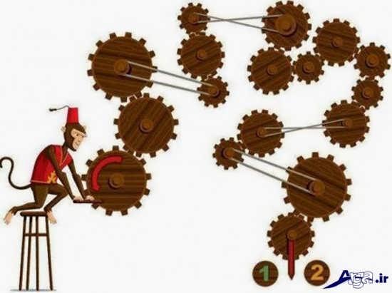 معمای میمون و چرخش چرخ ها