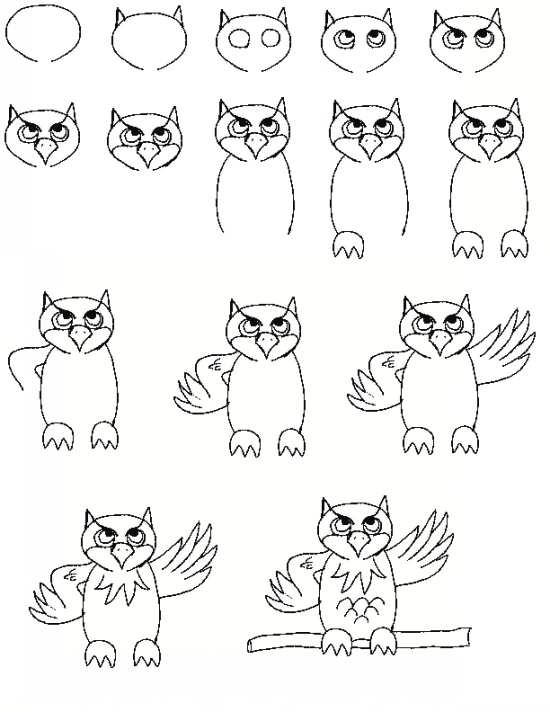 نقاشی جغد ساده