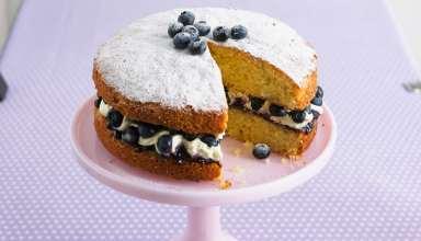 تزیین کیک اسفنجی زیبا و جدید در خانه