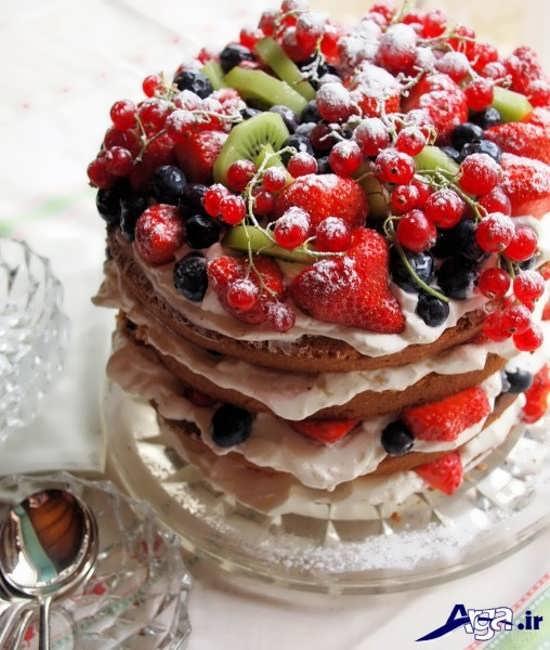 تزیین زیبا کیک با انواع میوه ها