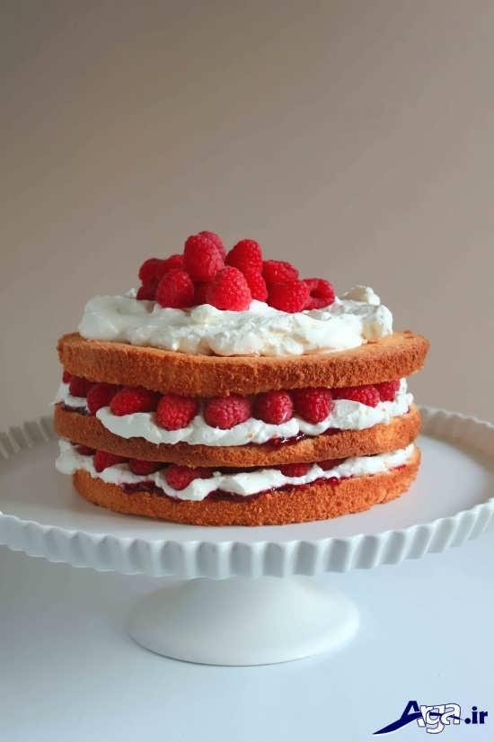تزیین ساده کیک با میوه