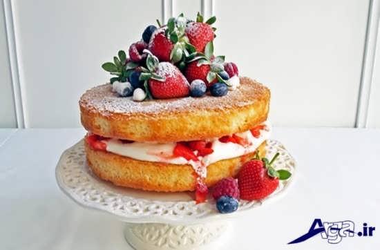 تزیینات متفاوت برای کیک اسفنجی