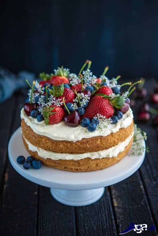 تزیین زیبا و متفاوت کیک اسفنجی