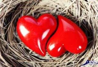 جملات و متن عاشقانه کوتاه برای همسر