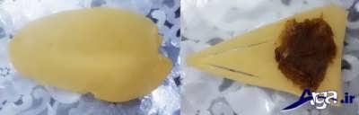 قرار دادن مخلوط خرما و هل در درون خمیر کلوچه