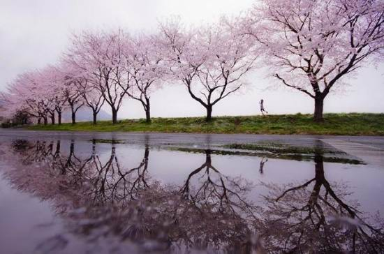 landscape photo to Profile (7)