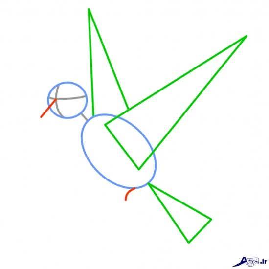 آموزش نقاشی پرنده