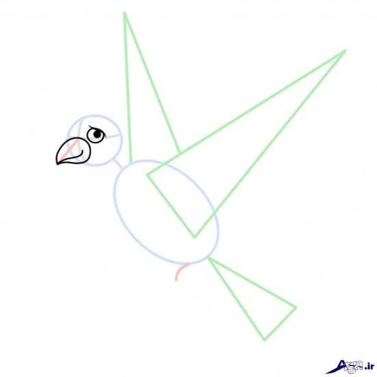 نقاشی پرنده ساده برای کودکان