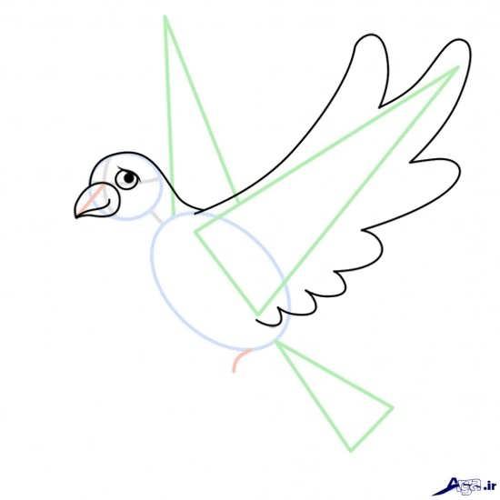 آموزش نقاشی پرنده به کودکان