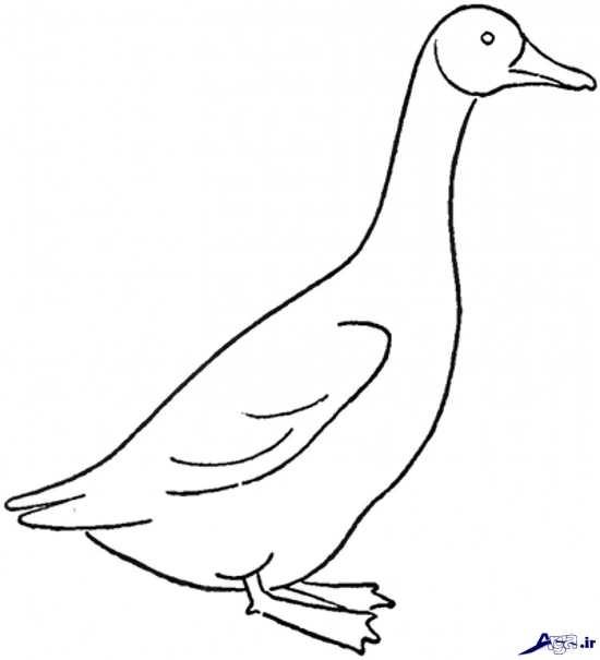 نقاشی اردک برای کودکان