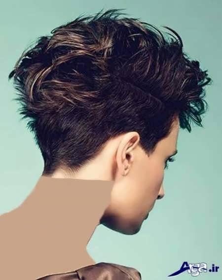 Dark hair color (10)