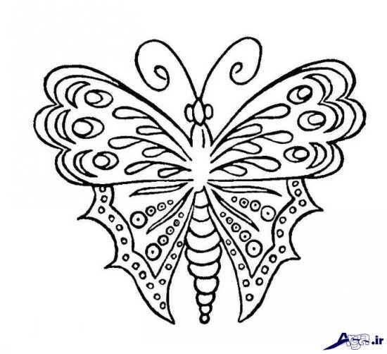 ظطرح پروانه برای گلدوزی