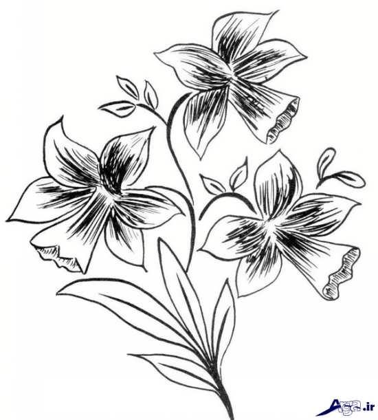 طرح گل برای گلدوزی
