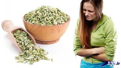 Fennel-Seeds-for-Gas