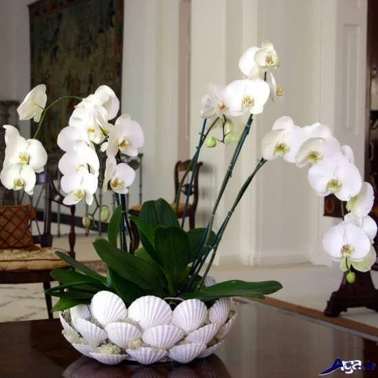 تزیین گلدان گل زیبا و شیک