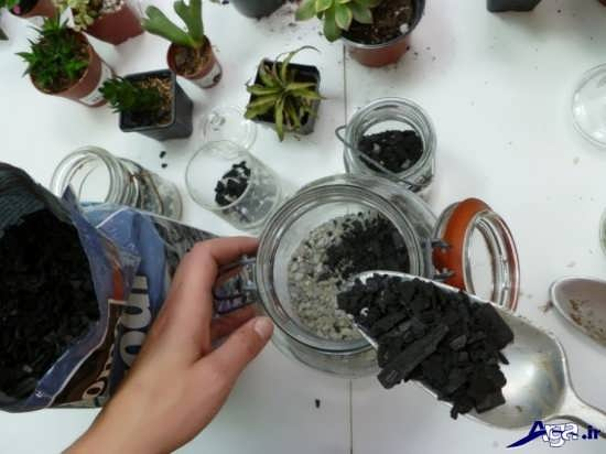 ساخت باغ شیشه ای و تراریوم