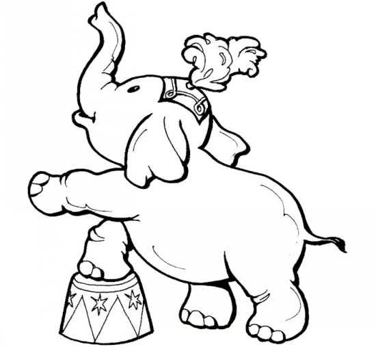 نقاشی فیل