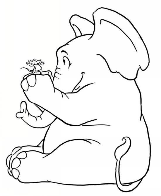 نقاشی فیل بامزه