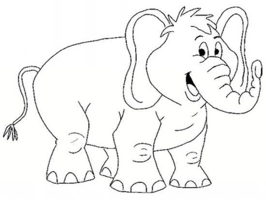 رنگ آمیزی کردن فیل برای کودکان