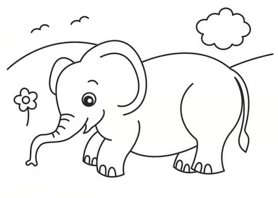 نقاشی زیبا و با نمک فیل