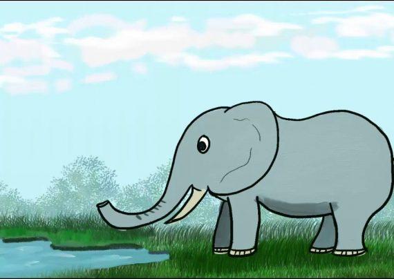 نقاشی فیل برای کودکان با رنگ آمیزی های جالب