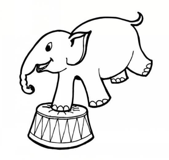 نقاشی های شیرین کاری های فیل در سیرک