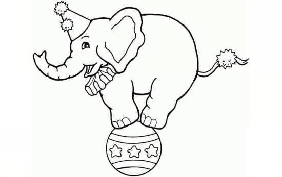 نقاشی های زیبا و متفاوت از فیل